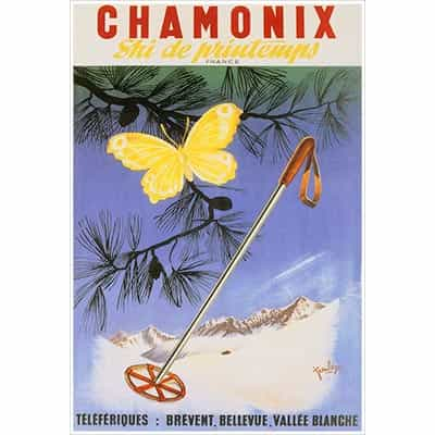 Chamonix Butterfly and Ski Pole Postcard